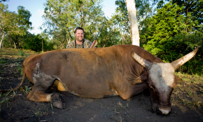 Mr. Tim Blackwell And 26 Inch Scrub Bull Taken With 458 Win Mag And Woodleigh 480gr RN SN While On Hunt Australia Safari NT