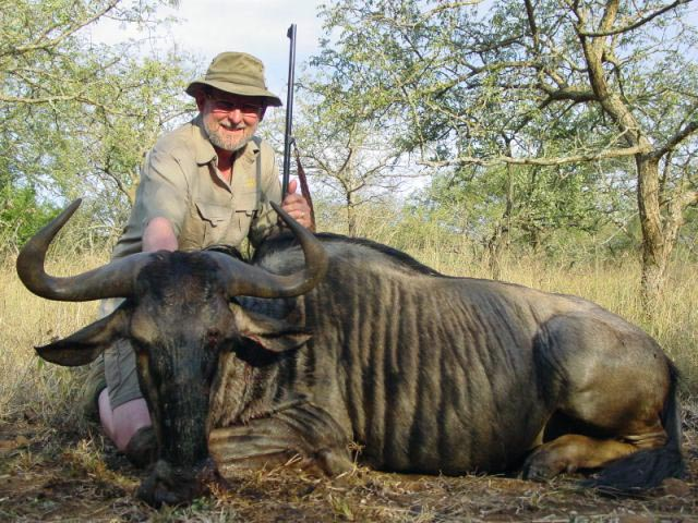 Mr George Wallace In Zululand With Blue Wildebeest Taken With Rigby 400 350 And Woodleigh 358 310gr Weldcore Soft Nose Bullet At 2140fps