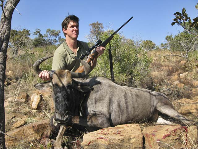 Mr Leon Hensel South Africa And Blue Gnu Taken With 7x57mm And Woodleigh 175 Grain Weldcore Protected Point Soft Nose Bullet