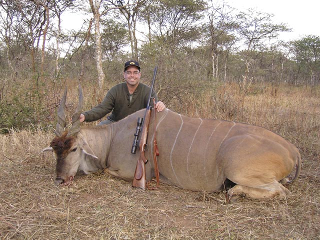 Mr Marvin Quillan Jr Texas USA And Eland Taken In Zimbabwe With 350 Rigby Rimless And Woodleigh 358 310gr Weldcore Round Nose Soft Nose Bullet At 2400fps